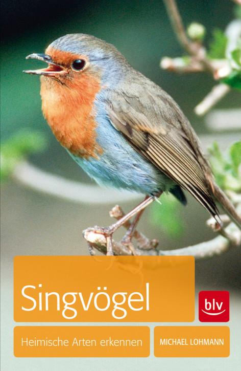 Singvögel